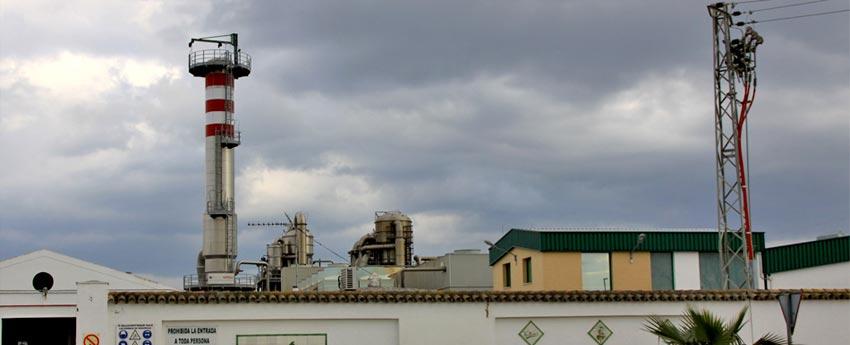 Cooperativa las Marismas de Lebrija en Sevilla